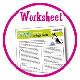A dogs needs - Worksheets